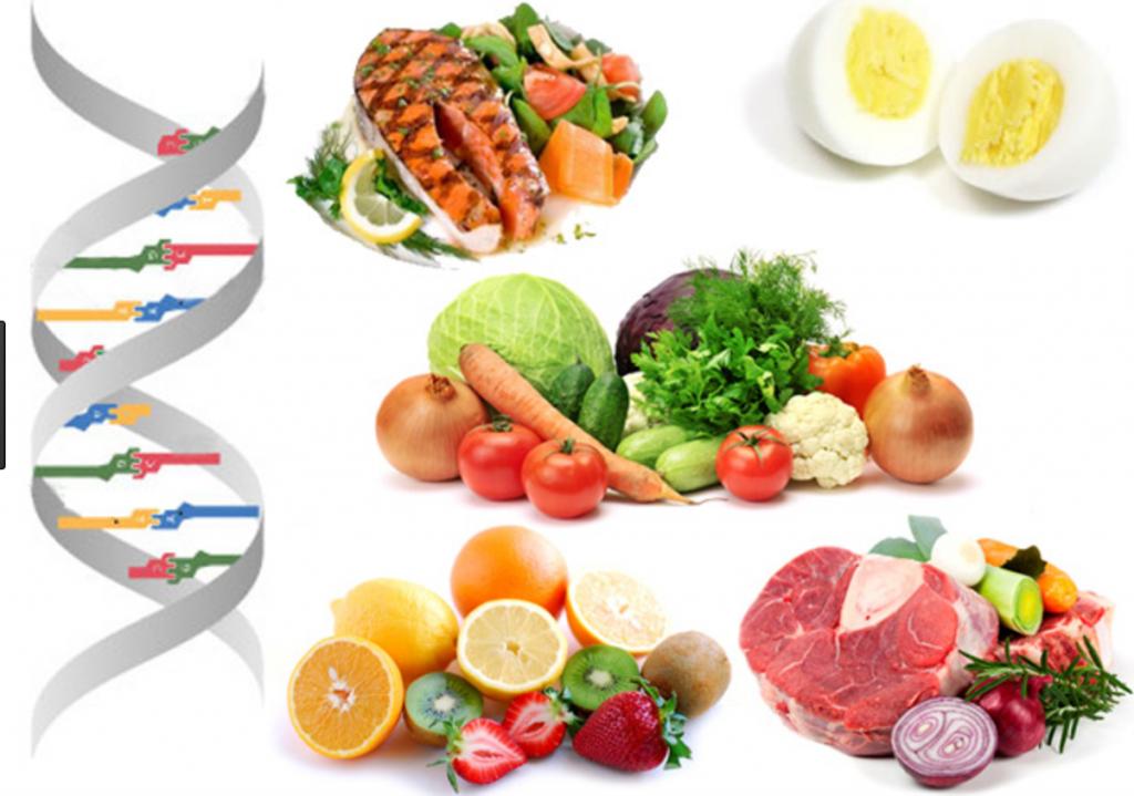 Low Carb Diet, Jeff Volek PhD, RD, Stephen Phinney, MD, PhD